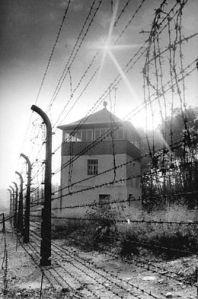 260px-Bundesarchiv_Bild_183-1983-0825-303,_Gedenkstätte_Buchenwald,_Wachturm,_Stacheldrahtzaun