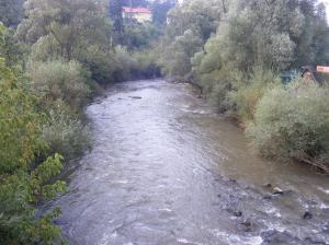 The_Olt_river