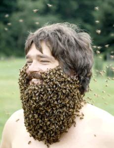 bee-beard