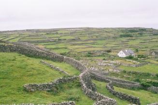 Inisheer_Gardens_2002_dry-stone_walls